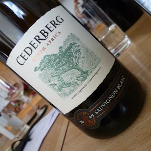 Sauvignon Blanc-Probe (105 von 21)
