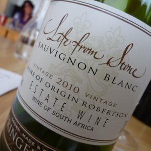 Sauvignon Blanc-Probe (106 von 21)